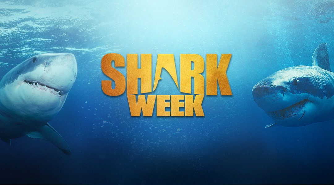 Jumping the Shark Week Seems Impossible Thanks to the Stories